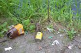 Ne enervează: Malurile Crişului în zona Sovata, pline de gunoaie şi de şobolani