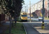 Traseele liniilor de tramvai în perioada 9 - 10 Decembrie 2017