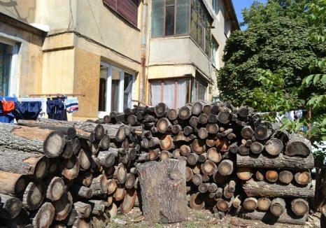 Au ars gazul! Cu magistrale de gaz la doi paşi, bihorenii se chinuie cu lemnele de foc