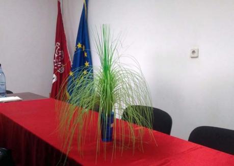 Kitsch a la PSD: Lecţie de prost gust la sediul PSD Oradea