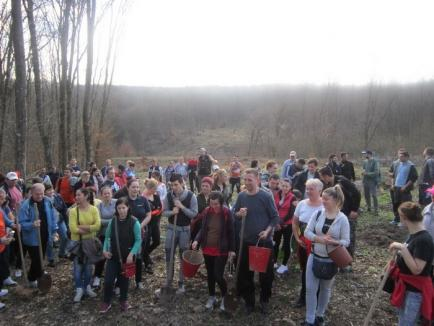 Rădăcini pentru Bihor: Sute de voluntari au împădurit județul (FOTO)