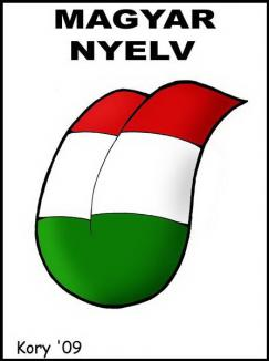 Proiectul de oficializare a limbii maghiare în Secuime, 'o prostie şi o diversiune'