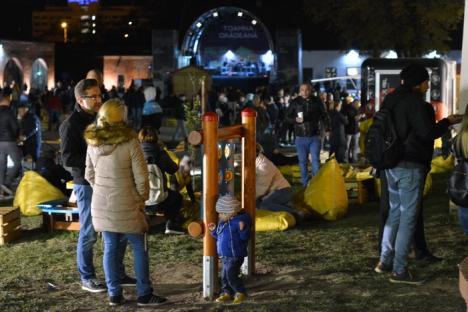 'Da, mamă, sunt la Delia!' Piaţa Unirii, full în ultima seară a Toamnei Orădene. Festivalul s-a încheiat un spectaculos foc de artificii (FOTO/VIDEO)