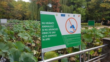Arii protejate pentru viitor: Peste 1.000 de copii au aflat de la Aqua Crisius ce înseamnă să aibă grijă de natură (FOTO)