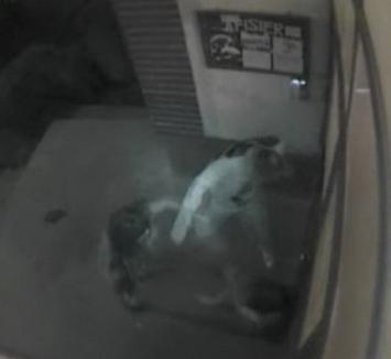 IMAGINI ŞOCANTE: Fiică de poliţist, bătută crunt de iubitul interlop (VIDEO)