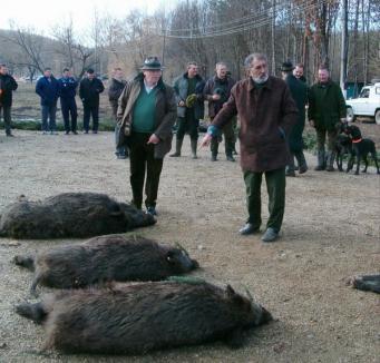 Sângeroasa vânătoare de la Balc continuă