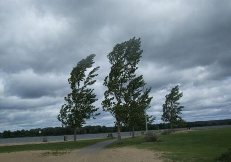 Alertă de vânt, lapoviţă şi ninsoare, dar şi disconfort termic în toată ţara!