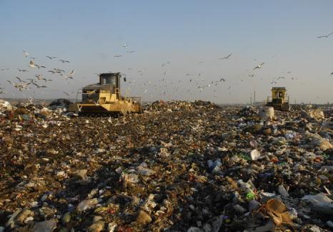 Consiliul Local a majorat tariful lunar de colectare a deşeurilor la 9,06 lei pe persoană
