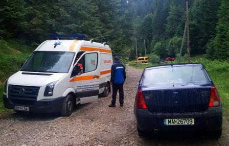 Jandarmii montani au salvat un tânăr... înţepat de viespe