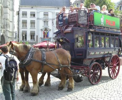 OTL vrea să cumpere o trăsură cu cai