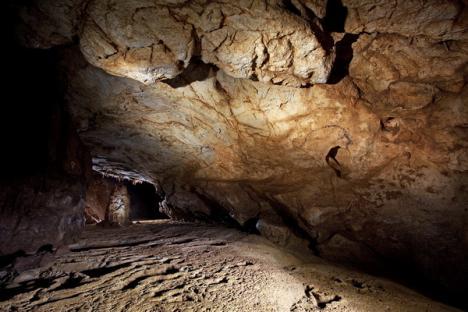Cele mai vechi picturi paleolitice din Europa Centrală, descoperite într-o peşteră din Bihor