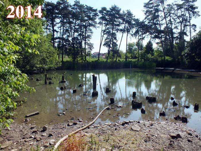 CU PERFUZIE. Ca să nu sece de tot, din 2012 lacul Ochiul Mare din Rezervaţia Peţea este alimentat artificial cu apă geotermală, printr-un furtun. Oscilaţiile nivelului şi ale temperaturii apei au dus la dispariţia, poate pentru totdeauna, a nufărului termal