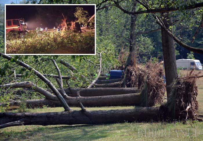"""CA SPICELE. Pâlcul de plopi plantaţi în anii '80, odată cu amenajarea campingului, s-a dovedit un adăpost înşelător: în noaptea de 23/24 iulie, 11 arbori au căzut """"din picioare"""", o parte chiar peste maşinile, rulotele şi corturile turiştilor"""