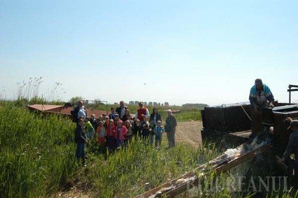 Păsările şi arborii, sărbătorite în teren (FOTO)
