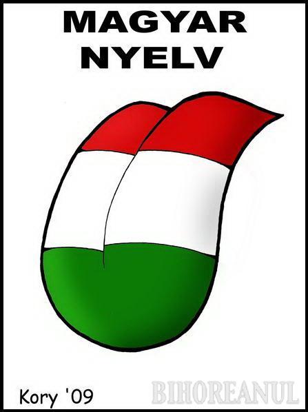 Proiectul de oficializare a limbii maghiare în Secuime, o prostie şi o diversiune