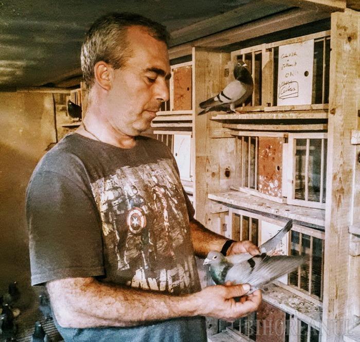 Campionatul porumbeilor voiajori: Onodi Vasile din Carei câştigă etapa de viteză-demifond Prievidza