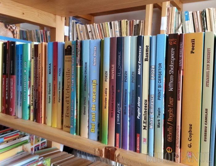 Bihorenii, chemaţi să doneze cărţi pentru înfiinţarea unei biblioteci româneşti la Chişinău