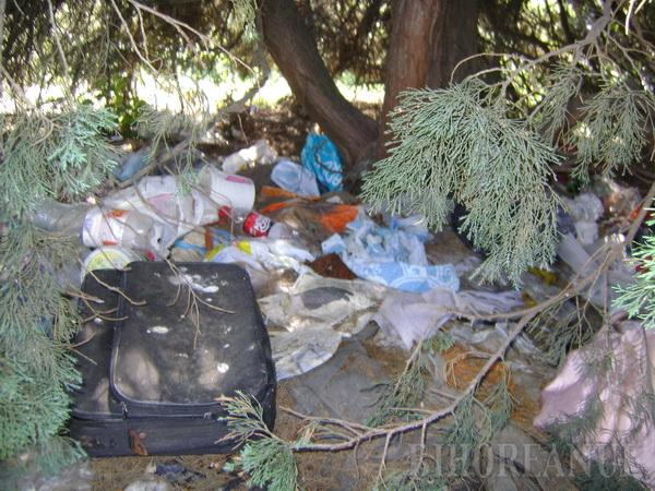 Şocant: Cadavru în putrefacţie, găsit la intersecţia bulevardelor Decebal şi Dacia