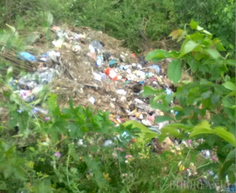 Primăria Batăr a îngropat ilegal deşeuri pe circa 5.000 metri pătrați de teren (FOTO)