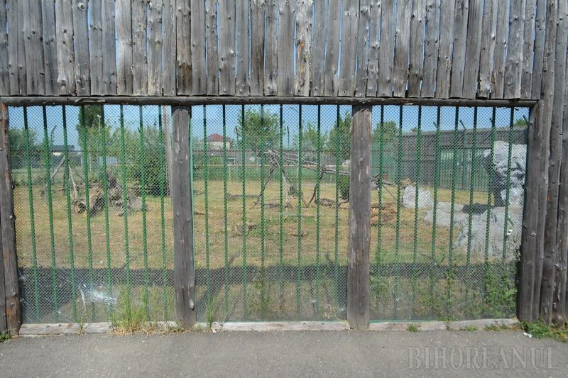 Grădina defectă: Ajunsă în stare deplorabilă, Grădina Zoologică din Oradea s-ar putea muta la Săldăbagiu (FOTO)