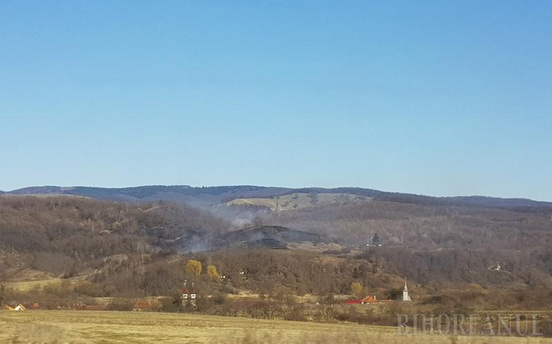 Incendiul de vegetație de la Țigănești (comuna Brusturi)