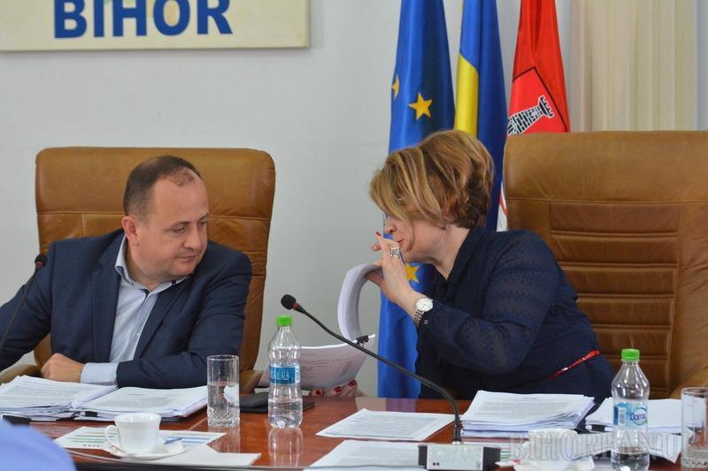 Semănaţi cu Guvernul Dăncilă: Liderul opoziţiei le reproşează şefilor Consiliului Judeţean că au rămas în urmă cu investiţiile în drumuri (FOTO)