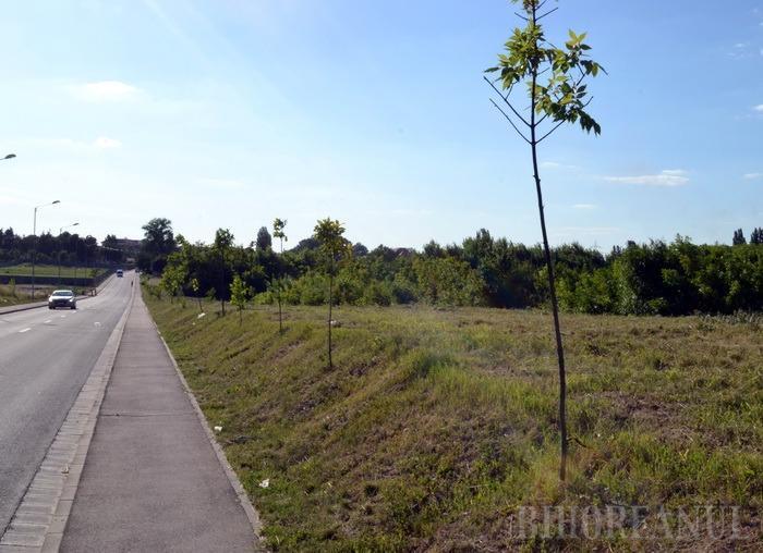 Direcţia de Patrimoniu scoate la licitaţie teren pentru dezvoltarea unui complex de locuinţe pe strada Ceyrat