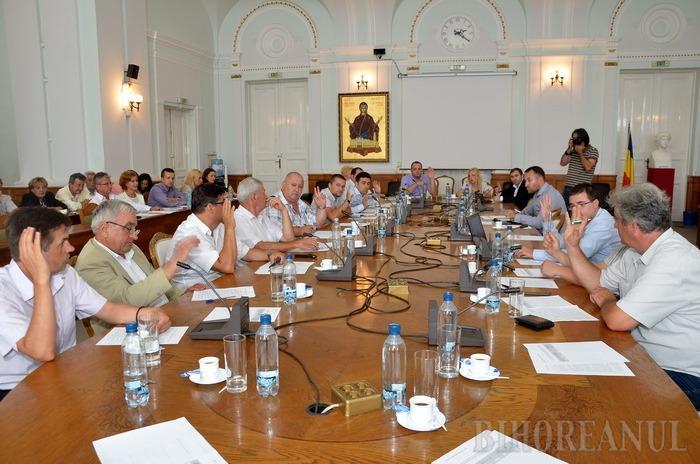 Consultări simultane: Consiliul Local a stabilit data referendumului privind alipirea comunei Sânmartin la Oradea pentru 10 mai 2015