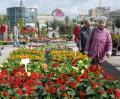 Târgul de grădini de la Lotus Center îşi primeşte vizitatorii (FOTO)