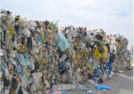 FĂRĂ CERERE. Firmele europene care valorifică deşeuri reciclabile nu mai acceptă decât resturi de calitate, necontaminate cu alte mizerii, aşa că cea mai mare parte a gunoaielor aruncate de orădeni zace în curtea Eco Bihor