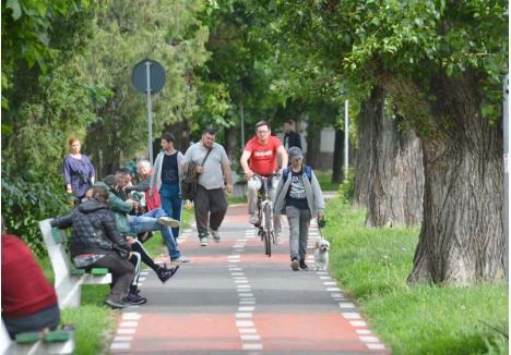 UNIVERSALĂ. În Oradea, una dintre cele mai vechi piste pentru biciclişti a fost trasată pe malul drept al Crişului Repede, între Podul Ladislau şi zona Sovata. Pentru că Primăria n-a construit o alee paralelă trotuarului, ci a trasat-o peste o parte din acesta, pista e aglomerată, fireşte, şi de pietoni. Spre riscul lor şi al bicicliştilor deopotrivă...