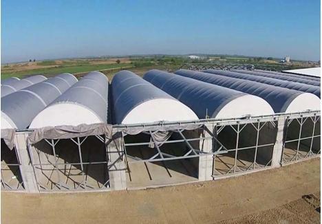 CA NOUĂ. În aceste hale ar trebui depozitate deşeurile vegetale ale bihorenilor, pentru a deveni compost, adică un îngrăşământ natural. Numai că, deşi a fost inaugurată în aprilie 2016, staţia de tratare mecano-biologică zace nefolosită