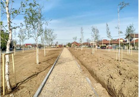EURO-PROIECTELE. Municipalitatea orădeană a decis să continue în acest an doar lucrările în parcurile finanţate cu bani europeni, cum este coridorul verde de pe strada Barcăului (foto). Aici au fost plantaţi aproape 385 de arbori, au fost trasate aleile, iar curând va începe amenajarea unei piste de alergare