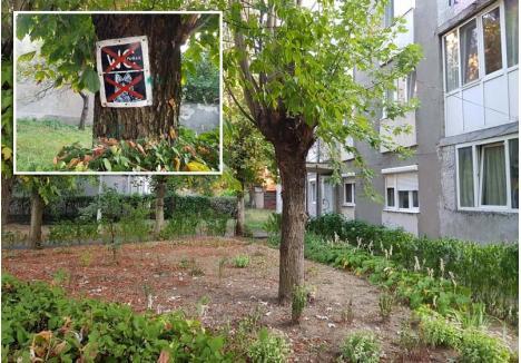 DOTĂRI MINIME. Pe lângă costurile mari pentru întreţinerea spaţiilor verzi, preşedinţii asociaţiilor din Oradea se plâng şi de vandalii care distrug ori murdăresc aceste zone. Pentru că alte soluţii nu au găsit, locatarii unui bloc de pe strada Feldioarei au agăţat de un copac un semn care aminteşte că zona verde nu este WC public. Numai să-l vadă şi netrebnicii...