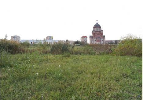 DELĂSARE. Terenul pe care va fi amenajată grădina botanică este acum unul plin cu buruieni