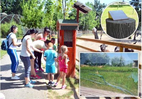 ŢEAPĂ! Considerată una dintre cele mai moderne din ţară, Zoo Oradea s-a distrus în doar câţiva ani de la reabilitare. Automatul cu hrană pentru animale e stricat, aşa că vizitatorii bagă degeaba bancnote în el, împrejmuirea din sticlă a ţarcurilor pentru animalele mari e crăpată, iar din ecranele touchscreen au mai rămas doar suporţii