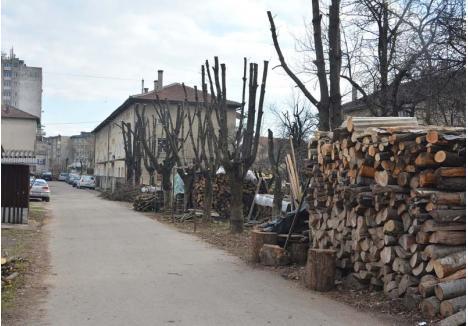 CODAŞI. În era digitală, locuitorii din Ştei, inclusiv cei de la bloc, se încălzesc cu lemne, la fel ca în alte cinci oraşe şi în peste 70 de comune bihorene