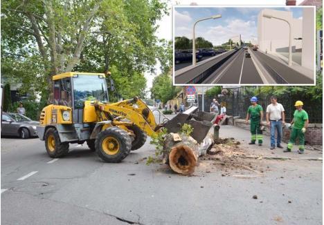ASFALT TANGO. Lucrările la pasajul Magheru au început săptămâna trecută cu tăierea primului aliniament de arbori din Aleea Ştrandului. Cei rămaşi vor fi tăiaţi şi ei pentru lărgirea şoselei şi mutarea trotuarului în parcarea Hotelului Dacia, lăsând zona fără vegetaţie...