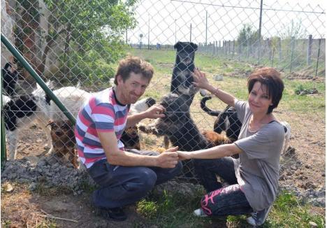 """DEDICAŢI 100%. Deşi îşi duc viaţa la marginea Salontei, aproape de fosta groapă de gunoi a oraşului, Maria şi Ferenc Raksi se consideră fericiţi. De câţiva ani, singurul lor scop e să aibă grijă de câinii fără stăpân. """"Aici avem tot ce ne trebuie, nu vrem nimic mai mult"""", spun cei doi soţi"""