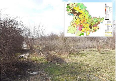 INTERZIS! Întinse pe o suprafaţă de peste 100 hectare, serele de pe Calea Borşului au fost demontate şi vândute la fier vechi în 2004 după o licitaţie fraudată. Devenite între timp o zonă părăginită, serele figurează pe harta verde a Oradiei, întocmită în 2010, odată cu realizarea cadastrului verde, şi reconfirmată în 2016, când s-a făcut Planul Urbanistic General al oraşului