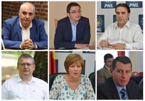 Candidaţii pe care mizează PNL Bihor la alegerile parlamentare sunt Gheorghe Carp (stânga sus) şi Adrian Hatos (centru sus) la Senat, respectiv Aurel Căuş (stânga jos), Kiss Janos (dreapta jos), Ioan Cupşa (dreapta sus) şi Florica Cherecheş (centru jos), la Camera Deputaţilor