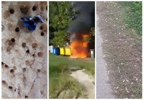 """Un tomberon al Colegiului """"Avram Iancu"""" a luat foc, din cauza unei ţigări aprinse. În plus, liceenii când nu îşi sting chiştoacele în pereţii şcolii, le strivesc pe jos, în curte"""