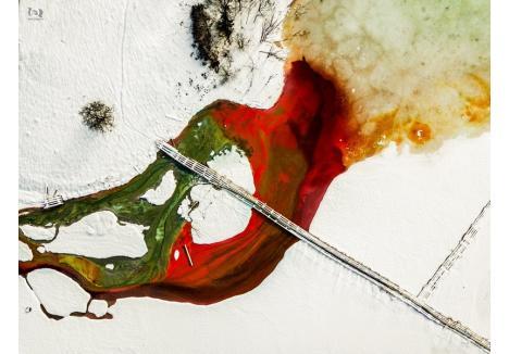 """Oaltă fotografie recent premiată, în cadrul Salonului Internațional """"Mihai Dan-Călinescu"""", categoria Color, a fost """"Nature bleeding""""  care reprezintă un lac de decantare din Geamăna,județul Alba, cunoscut pentru deversarea de cupru care a invadat locul. Acest dezastru ecologic a devenit o atracție atât pentru orădean cât și pentru arți artiști fotografi din țară și străinătate."""
