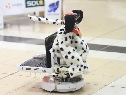 Invenţii studenţeşti: Nicuşor, robotul-câine care orbeşte hoţii, sau Dronică, robotul care spală vase (FOTO/VIDEO)