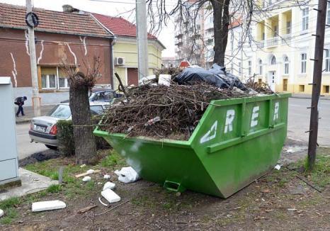 Curăţenie la puterea a doua: RER Ecologic Service şi Primăria Oradea dau startul curăţeniei de primăvară, campanie derulată, pentru prima oară, în două etape