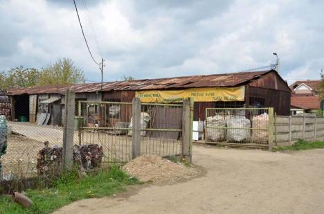 Afară cu fiarele! Primarul Ilie Bolojan vrea să interzică funcţionarea depozitelor de fier vechi în zonele rezidenţiale ale oraşului