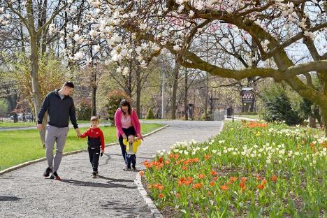 Unde ieșim săptămâna asta în Oradea: Ziua Internațională a Pământului, în grădina Palatului Episcopal