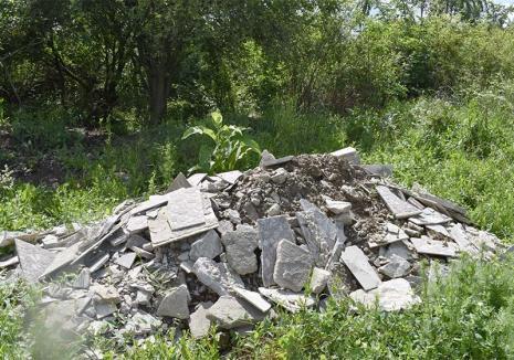 Obligaţi la curăţenie: Înconjurate de mormane de gunoaie, primăriile din Bihor sunt somate să amenajeze platforme de colectare