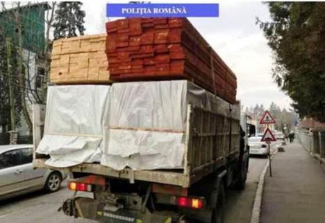 Captură record la un depozit de lemne din Vadu Crişului: Polițiștii au confiscat încasările pe 100 metri cubi de cherestea vândute fără acte