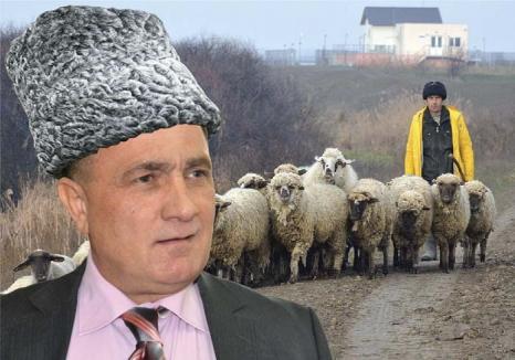 'Ciobanul' Dume: Directorul ABA Crişuri, Dorel Dume, proaspăt promovat şef la Bucureşti, e acuzat de corupţie